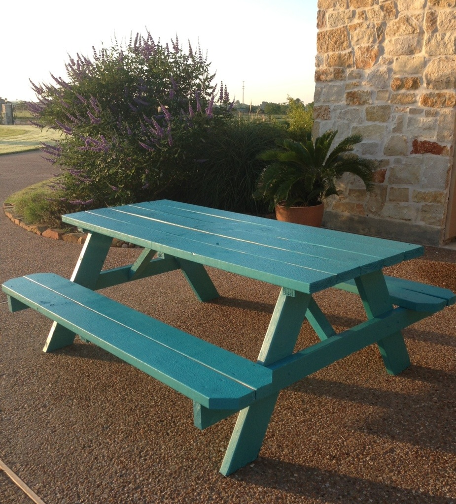 Picnic Table Meanwhile Back At The Ranch - Teal picnic table